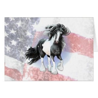 Gypsy Vanner Prince Card