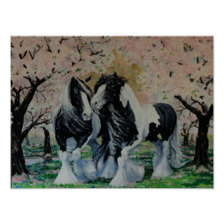 Gypsy Vanner stallion/mare horse cherry blossoms Poster