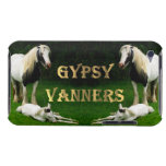 Gypsy Vanners iPod Touch Covers