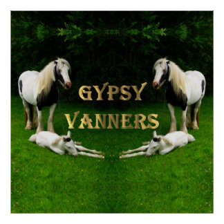 Gypsy Vanners Print