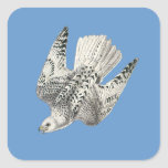 Gyrfalcon Falcon Diving Vintage Art Square Sticker