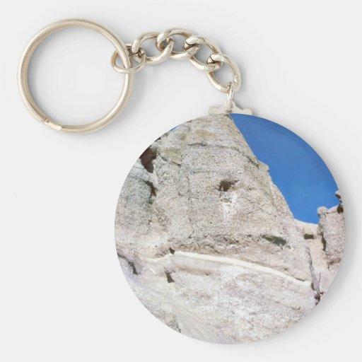 Gyrfalcon nest key chains