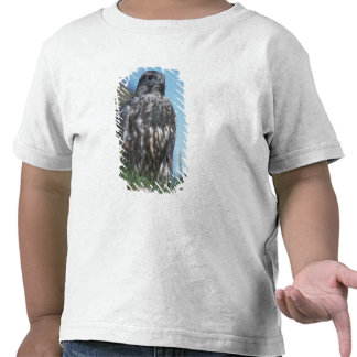 gyrfalcon rusticolus de Falco joven que consigue Camisetas