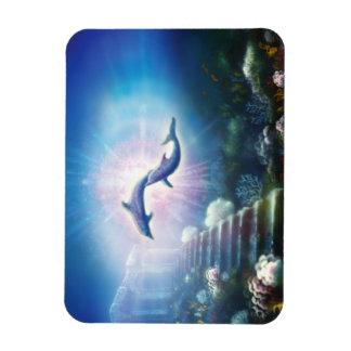 H019 Nori Dolphins Magnet