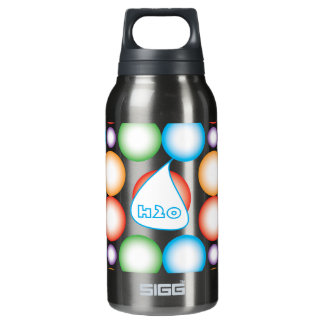 H20 INSULATED WATER BOTTLE