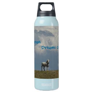 H2o Bottle -Dreams come True