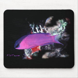 H2Oasis Basslet Mouse Pad