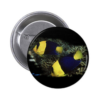 H2Oasis BiColor Angel 2 Inch Round Button