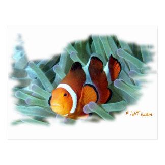 H2Oasis Clownfish Tarjeta Postal
