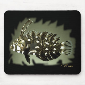 H2Oasis Dragon Wrasse Mouse Pad
