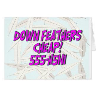 H5N1 Down Feathers Cheap!  555-H5N1. Card