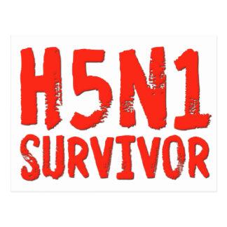 H5N1 SURVIVOR Bird Flu Postcard