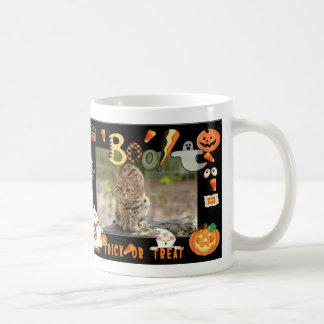 h-103-geoffroy-cat mugs