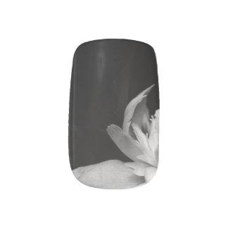 H.A.S. Arts nail designs, image detail, Blanc Minx® Nail Art
