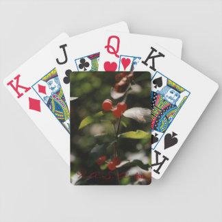 H A S Naipes rojos de la baya de los artes Baraja Cartas De Poker