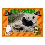 h-giant-panda-004 greeting card