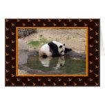 h-giant-panda-013 greeting card