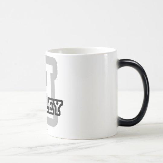 H is for Hadley Magic Mug