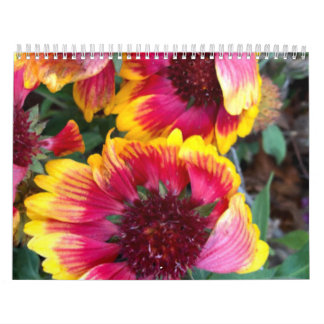 H.K. Photography Calendar