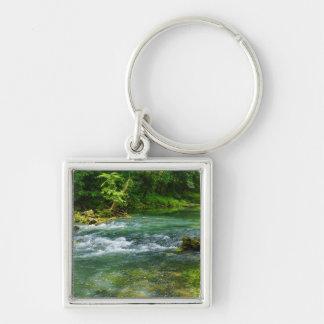 Ha Ha Tonka Rapids Keychain