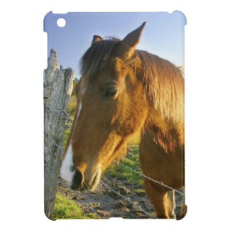 Haast, New Zealand. A horse ranch in New 2 Cover For The iPad Mini