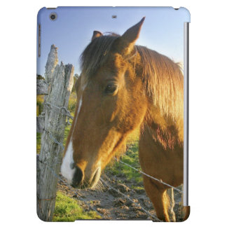 Haast, New Zealand. A horse ranch in New 2 iPad Air Cover