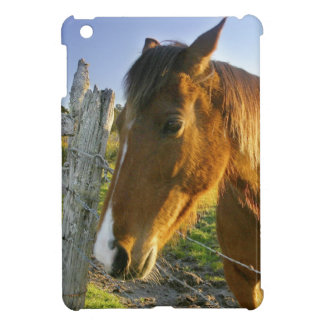 Haast, New Zealand. A horse ranch in New 2 iPad Mini Covers