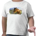 Haast, Nueva Zelanda. Un rancho del caballo en Camisetas