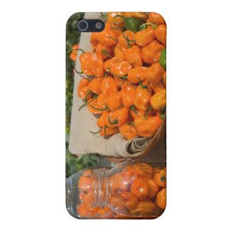 Habanero Garden Case For iPhone 5