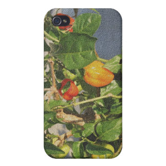 Habanero Peppers on Plant sandstone Case For iPhone 4