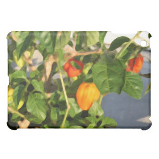 Habanero plant photograph with peppers case for the iPad mini