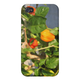 Habanero plant photograph with peppers iPhone 4/4S covers