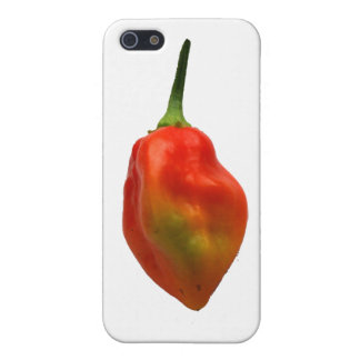 Habanero Single Pepper Photograph iPhone 5 Cover