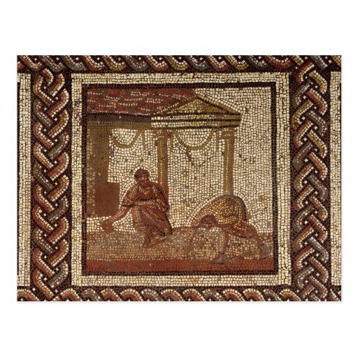 Habas de la siembra, de Santo-Romano-en-Galón Postal