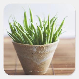Habas verdes en pote en la superficie de bambú pegatina cuadrada