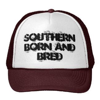 haber llevado meridional y haber criado gorros