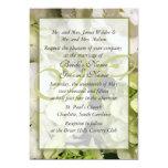 """Habitación verde blanca del boda del Hydrangea Invitación 5"""" X 7"""""""