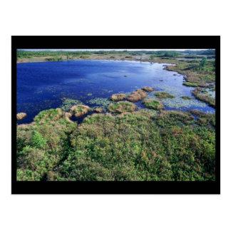 Hábitat del humedal en la fauna nacional de Okefen Postal