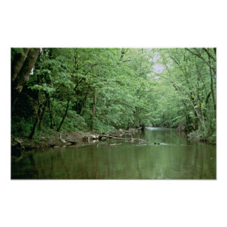 Hábitat del río, Kentucky Impresiones