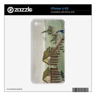 Habitations of the Papu Tribe, Rawak, plate 22 fro Skin For iPhone 4S