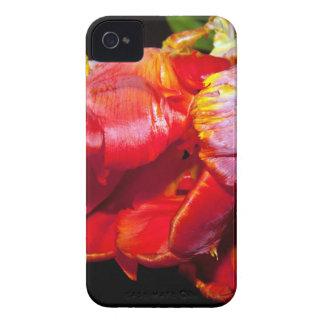 HABLA TULIP iPhone 4 Case-Mate CARCASAS