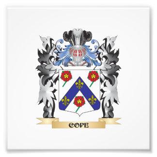 Hace frente el escudo de armas - escudo de la fotografías