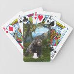 Hace un oso ...... barajas de cartas