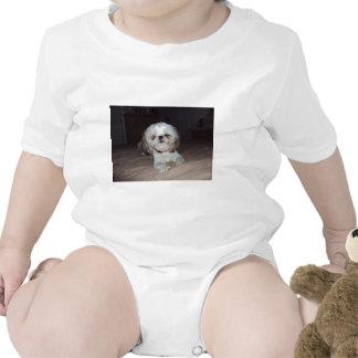 ¿Hace usted Shitzu Camiseta