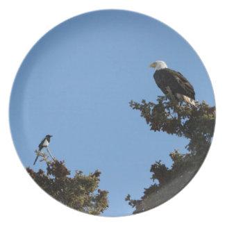 HACES Eagle calvo y Staredown de la urraca Plato Para Fiesta