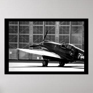Hacha de guerra de P-40C Póster