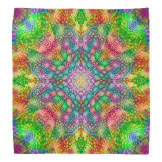 Hacia fuera allí, pañuelo colorido del bandana