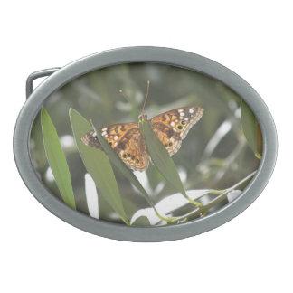 Hackberry Emperor Butterfly Belt Buckle