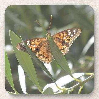 Hackberry Emperor Butterfly Coaster