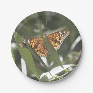 Hackberry Emperor Butterfly Paper Plate
